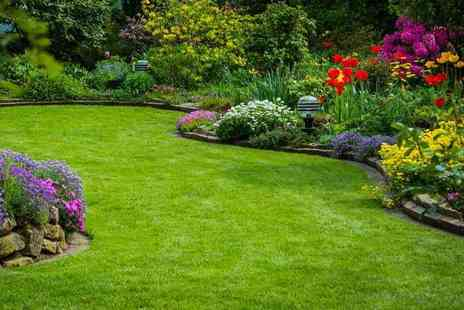 Greensleeves - Lawn treatment including seasonal fertiliser and weed or moss control - Save 0%