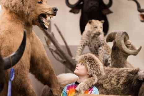 Shropshire Hills Discovery Centre - Ice Age Exhibition Pass Adult and Child or Two Adults and Three Children - Save 44%