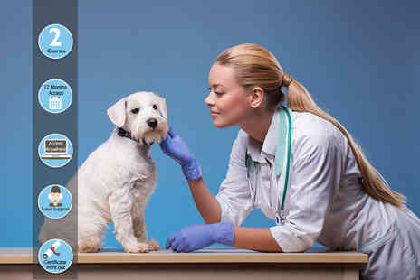 Oplex Careers - Online veterinary assistant and animal nursing course bundle - Save 97%