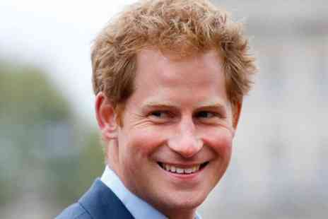 Traditional Tours UK - Private Prince Harry Tour of London - Save 0%