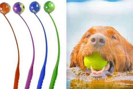GameChanger Associates - Dogs tennis ball launcher available in blue, green, orange and purple - Save 46%