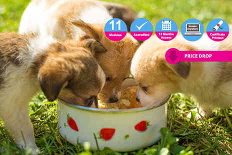 Holly & Hugo - Accredited pet nutrition course - Save 92%
