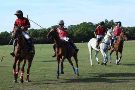 Europe Shuttle - Horse & Polo Half Day in Windsor - Save 0%