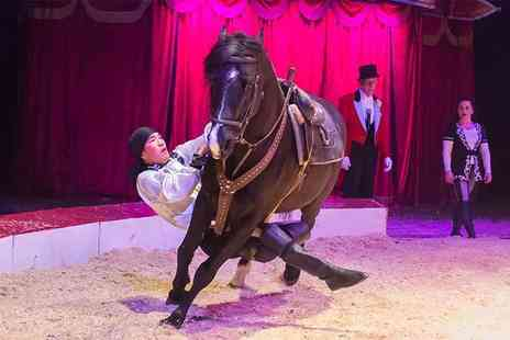 Zippos Circus - Side or front view ticket to Zippos Circus with popcorn - Save 39%