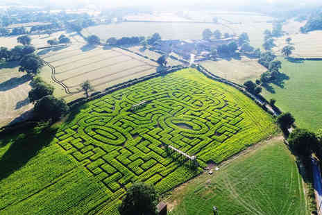 Cawthorne Maize Maze - Maize maze entry for one child, one adult, or family of four - Save 42%