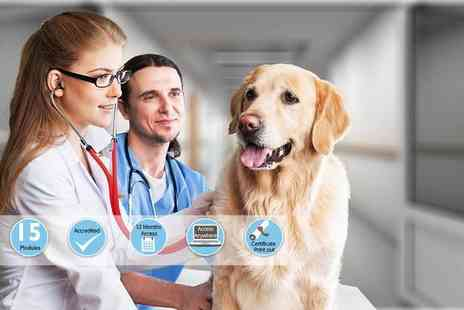 International Open Academy - Accredited veterinary support assistant course - Save 87%
