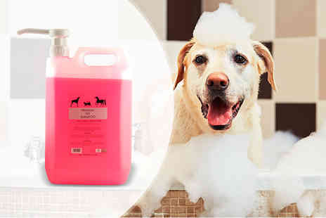 Carefree Hairdressing - 5L of pet shampoo - Save 54%