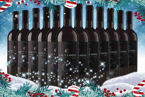 Q Regalo - 12 bottles of luxury Cal Y Canto wines - Save 68%