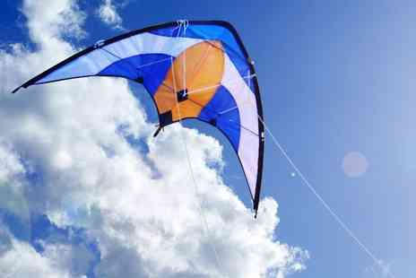 Easy Plants - One professional sporty stunt kite dual line control - Save 40%