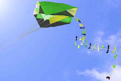 Easy Plants - An easy to fly pocket kite - Save 54%