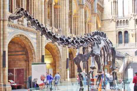 Pinocchio Tours - Kid Friendly Natural History Museum & Dinosaurs Private Guided Tour in London - Save 0%