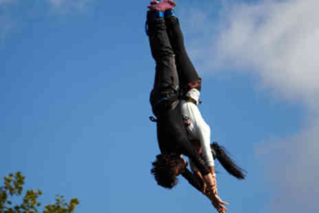 Virgin Experience Days - Lovers Leap Tandem Bungee Jump - Save 18%