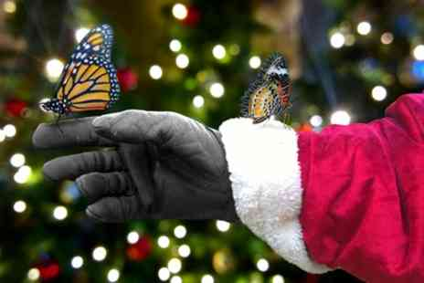 Bugtopia Hornsea - Santas Grotto and Entry to Jungle Trail for Up to Four Children - Save 20%