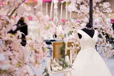 Bride The Wedding Show - Ticket to Bride, The Wedding Show on 5 or 6 January 2019 - Save 55%