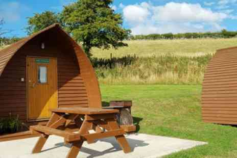 Humble Bee Farm - Two or Three Night Big Chief Wigwam Stay for Two or Four with Fairy Lights - Save 38%
