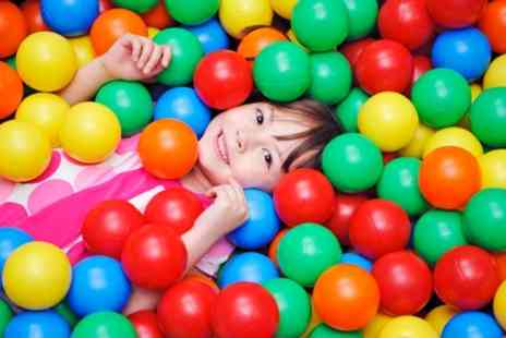 Wild Adventure - Soft Play Entry with Meal for Up to Four Children - Save 42%