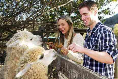 The Llama Park - Entry to The Llama Park for one adult and one child or two adults and two children - Save 83%