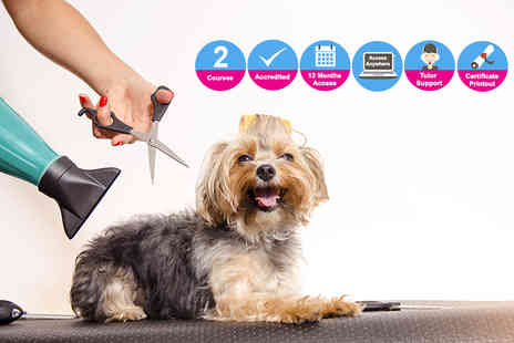 Oplex Careers - Bundle of two accredited dog grooming courses - Save 0%