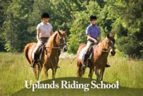 Uplands Riding School - Two Hour Horse Riding Experience Including Lesson or Hack For Two - Save 24%