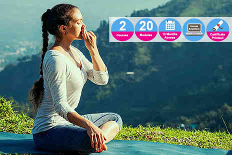 Vizual Coaching - Yoga and happiness course bundle - Save 92%