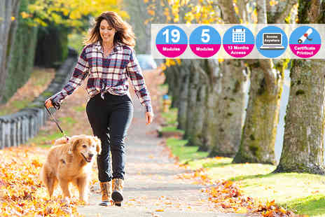 Vizual Coaching - Dog walking, pet sitting and animal care course bundle - Save 90%