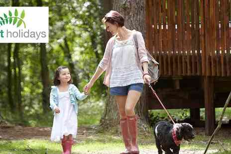 Forest Holidays - Exclusive Savings on Forest Holiday Family Escapes - Save 0%