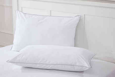 Cascade Home - Two pack of cotton cover down like pillows - Save 81%