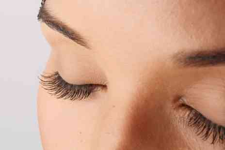 KCs Unisex Salon - LVL Lashes with Tint and Optional Eyebrow Wax and Tint - Save 68%
