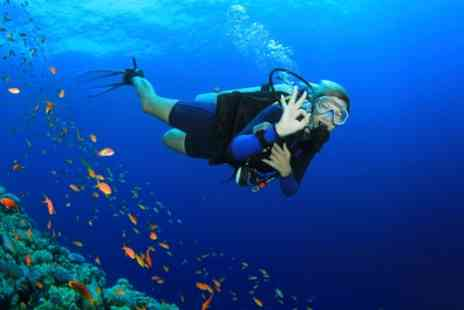DiveMania Scuba - Introduction to Scuba Diving for Up to Four - Save 48%