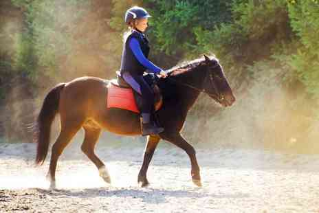 Mackenzies Equestrian Centre - One hour horse riding lesson for one child - Save 40%