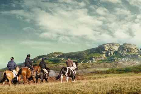 Liberty Trails - Discover Dartmoor on Horseback - Save 0%