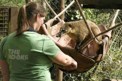 Dartmoor Zoo - Keeper for the Day with Lunch for Two - Save 0%
