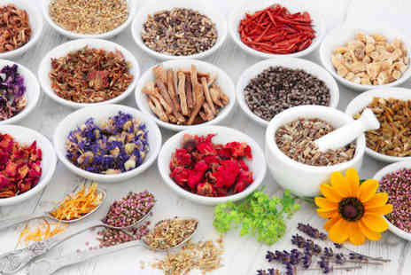 International Open Academy - Master herbalist Cpd certified course - Save 81%