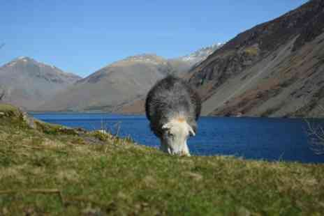 The Mountain Goat - High Adventure Tour - Save 0%