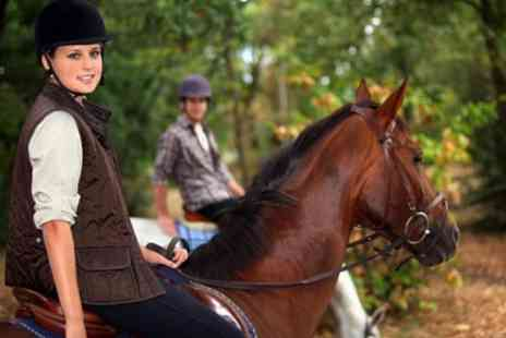 Edinburgh and Lasswade Riding Centre - One Hour Horse Riding Lesson or Hack - Save 44%