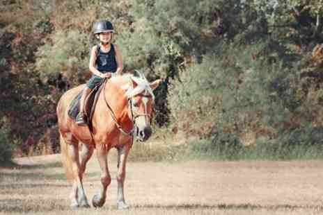 Cowley Riding School - One Hour Horse Riding Lesson for Child or Adult - Save 20%