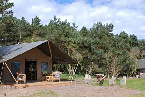 Harvest Moon Holidays - Four nights midweek glamping stay for up to eight people - Save 56%