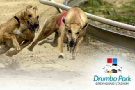 Drumbo Park - Greyhound Racing: Entry, Race Programme, Burger, and Drink For Two (£10) or Four (£19) at Drumbo Park (Up to 53% Off) - Save 53%