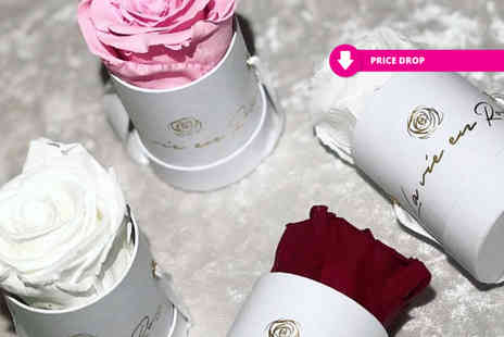 La Vie En Rose - Real rose that lasts a year available in three colours - Save 60%