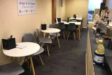 Wags & Whiskers Canine Cafe - Dog Friendly Lunch for Two or Four People and Dogs - Save 40%