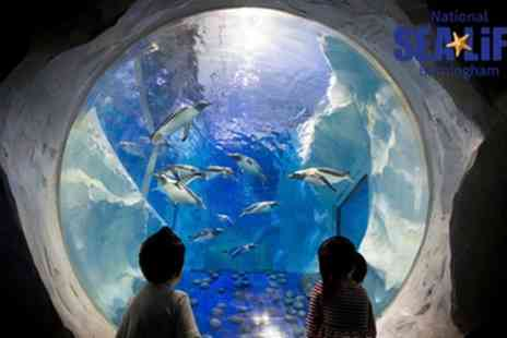 National Sea Life Centre - Entry to Sea Life Aquarium with Soft Drink - Save 50%