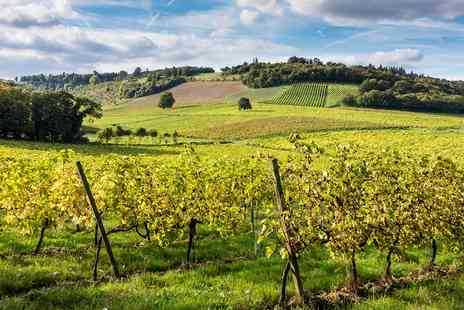 Denbies Wine Estate - Surrey vineyard train tour with bubbly for Two - Save 63%