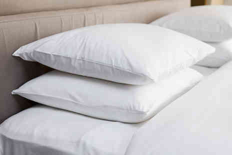 Direct Warehouse - Pair of goose feather and down pillows - Save 70%