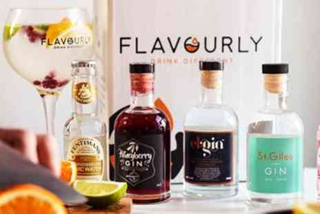 Flavourly - Craft gin box with mixers and snack - Save 43%