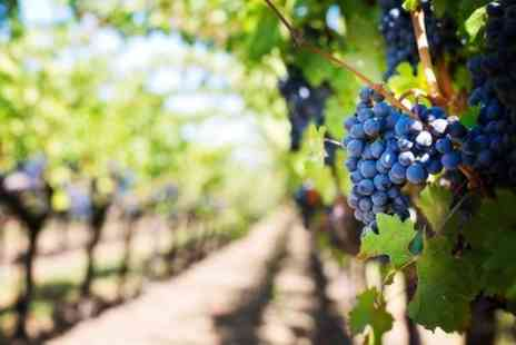 Europe Shuttle - Private Winery and Vineyard Tour from Barcelona by Minivan - Save 0%