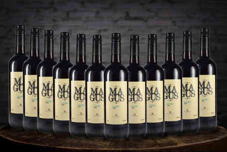 All My Wine - Dozen bottles of D.O. Ribera del Guadiana Magnus red wine - Save 73%
