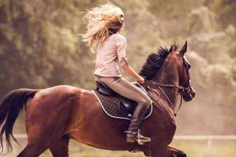La Rocco Riding School - One Hour Private Horse Riding Lessons - Save 43%