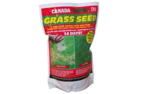 Groupon Goods Global GmbH - Up to 3kg Canada Green Grass Seeds - Save 0%