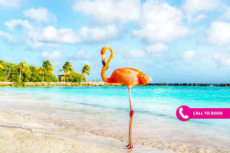 Viva Cruise - 10 nights fly cruise with overnight Miami stay and eight nights full board Southern Caribbean cruise aboard the Carnival Horizon and return flights - Save 32%