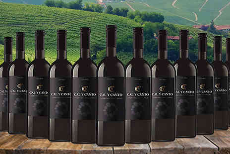 MGB Lifestyles - 12 Bottles of Award Winning Cal Y Canto Castilla Wine Choose White, Red or Rose - Save 65%
